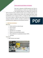 OBTENCIÓN DE ADN DE BACTERIAS PATÓGENAS
