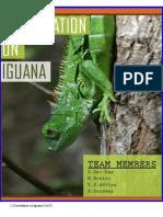 Iguana Dissertation