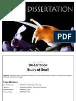 Snail Dissertation