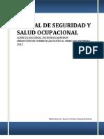 Manual de Seguridad y Salud Ocupacional ANH