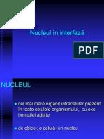 LP 6 - Nucleu