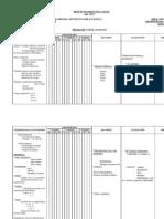 Planificaci n y Desarrollo Anual de Contenidos 4 -5 y 6 A