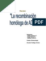 resumen recombinacion homologa