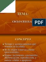 Tema Ciclo Celular