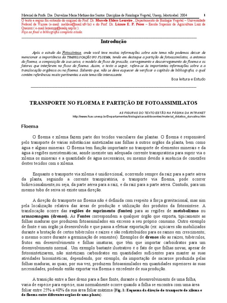 Biologia Fisiologia Vegetal 08 Floema Transporte