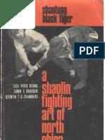 Shantung Black Tiger Kungfu