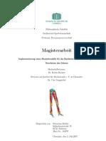 Magisterarbeit_Muskelmodellierung