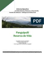 Informe Ejecutivo Proyectos Central Hidroeléctrica Neltume y Línea de Alta Tensión S/E Neltume - Pullinque de Endesa Enel