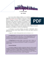 2da Clase Potencial de Reposo de La Membrana