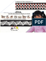 Niños y niñas de los pueblos indigenas de Chile e inmigrantes. Caterin Andrea, una niña descendiente de diaguita. En Vicuña.