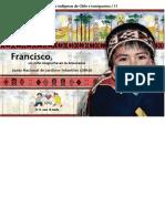 Niños y niñas de los pueblos indigenas de Chile e inmigrantes. Francisco, un niño mapuche en la araucanía