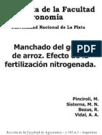 Manchado Del Grano de Arroz Efecto de La Fertilizacion Nitrogenada