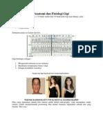 Anatomi Dan Fisiologi Gigi