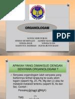 ORGANOLOGAM KELOMPOK 1
