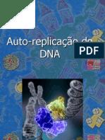 Auto_replica§£o_do_DNA_aula