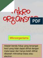 Microorganisma(Bm)