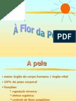 A Flor Da Pele - Palestra