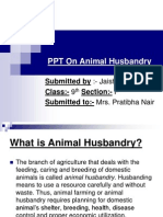 PPT on Animal Husbandry