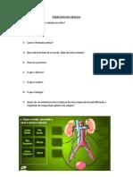 EXERCÍCIOS DE CIENCIAS sist urinario