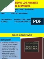 Derecho Societario