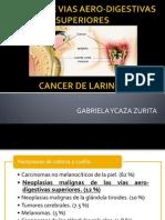 Cancer de Vias Aero-digestivas Superiores