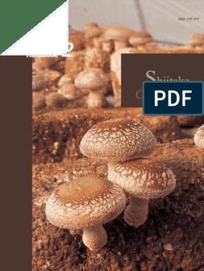 Mushroom Growers' Handbook 2: Shiitake Cultivation | Carbon