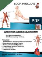 Trabajo de Fisio Disertacion