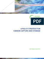 Policy Strategy for Ccs