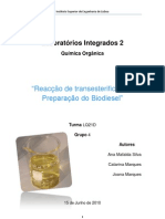 RelatorioLI2Organica Biodiesel