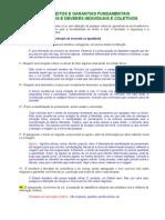Complemento-05-Direito-Consitucional-Art.-5°-Comentado (1)