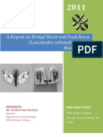 A Report on Brinjal Shoot and Fruit Borer and Its Management