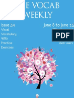 The Vocab Weekly_Issue _34