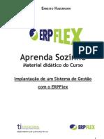 livro ERPFlex