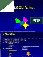 Calgolia Case GAMAR Overview (1)