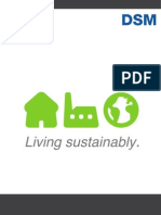 DSM Living sustainably