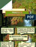 comprensinlectoraytiposdelectura-090717192426-phpapp02