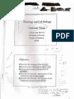 Nerve Tissue Note - histology