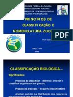 AULA DE NOMENCLATURA E COLEÇÕES ZOOLÓGICAS