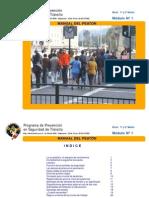 Manual Del Peaton.pdf