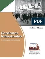 Cordones Industriales