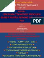 Tpt III Bunga Potong &Bunga Pot Edit - Copy