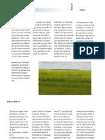 Biomas Brasileiros - Parte 2