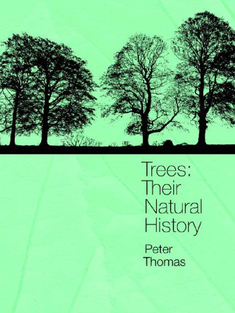 Trees their natural history stoma trees fandeluxe Image collections