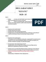 Hasil Modul Saraf Lbm 5 Sgd 15