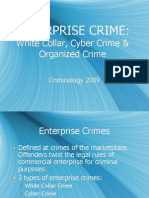 Enterprise Crime