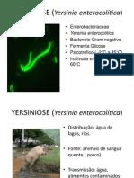 YERSINIOSE (Yersinia enterocolítica)