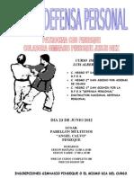 Curso Defensa Personal II