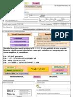 CPLB-situatii financiare 2011