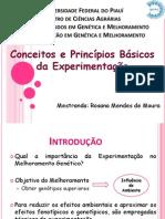 _Aula_ Principios Da Experimentacao
