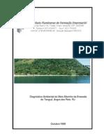 Diagnóstico Ambiental do Meio Marinho da Enseada do Tanguá - IFFE, 1999